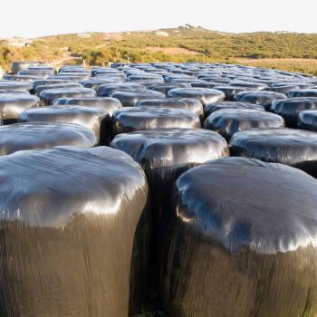 ANTONIO ESPAÑA E HIJOS pone en marcha una planta de triturado de polietileno en Huelva