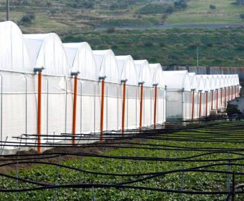 PLÁSTICOS MARO inicia su actividad con la puesta en marcha de una planta de extrusión de filmes agrícolas en Almería