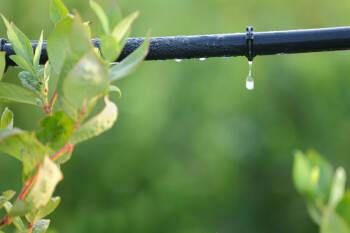 CAUDAL -EXTRULINE SYSTEMS- proyecta ampliar la producción de tuberías de polietileno para riego